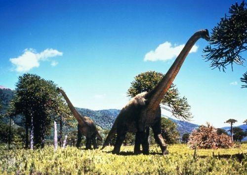 Gambar Brachiosaurus