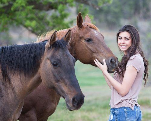 gambar kuda bongkar pasang