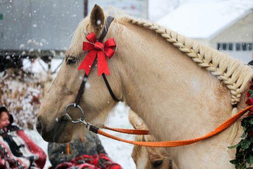 gambar ebeg kuda lumping