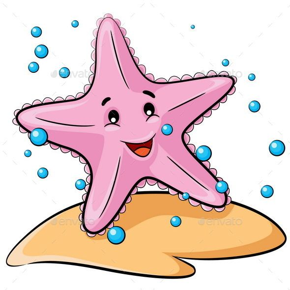 bintang laut kartun