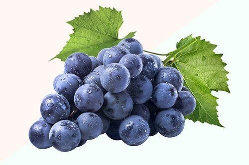 Buah Pemanjang Umur Anggur